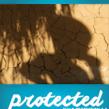 การปกป้องเด็ก : บทเรียนการทอดทิ้งเด็ก